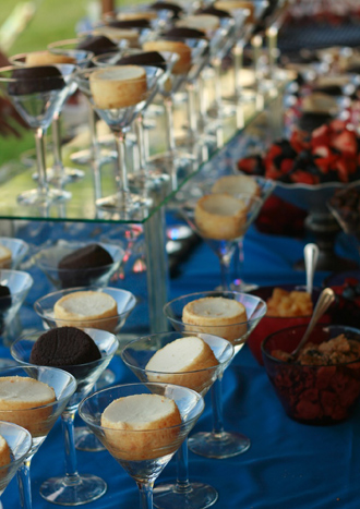 Cheesecake and chocolate cake bar with toppings Who needs a wedding cake